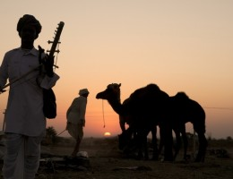 India y Nepal para todos con feria de camellos y Dubai - Noviembre 2018