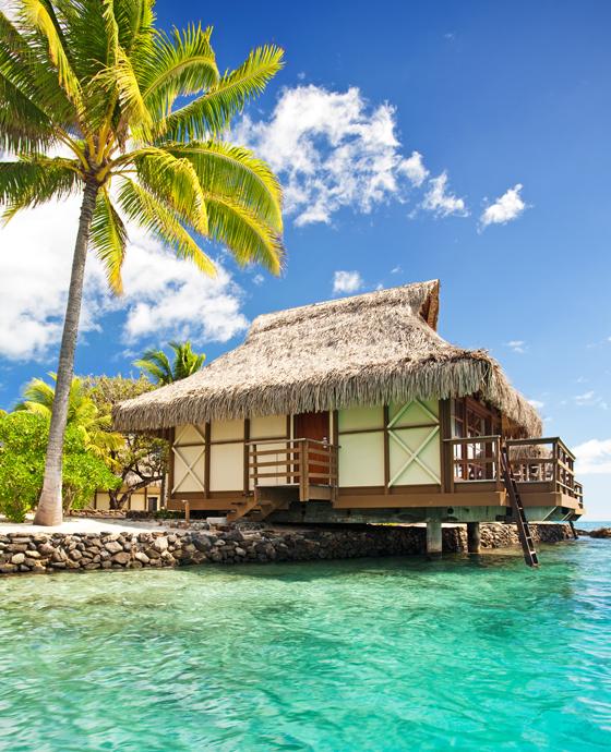 Maldivas & Sri Lanka