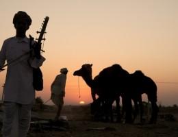 India y Nepal para todos con feria de camellos en Pushkar