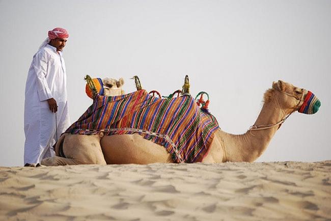 Extensión al desierto desde Dubai