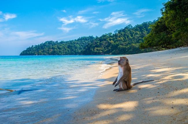 Caminos del norte de Tailandia