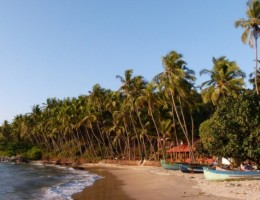 3 - Sur de India con playas de Goa